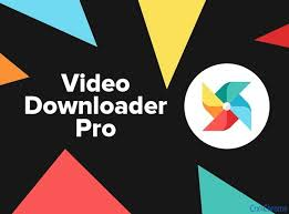 Any Video Downloader Pro 7.19.1 With Crack Latest Version